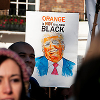 London UK. January 21st 2017.An estimated 100,000 protesters took part in a Women's March from the US Embassy in Grosvenor Square to Trafalgar Square as part of an international campaign on the first full day of Donald Trump's Presidency of the United States. Placard with a drawing of Trump and the words 'Orange is not the new black'.