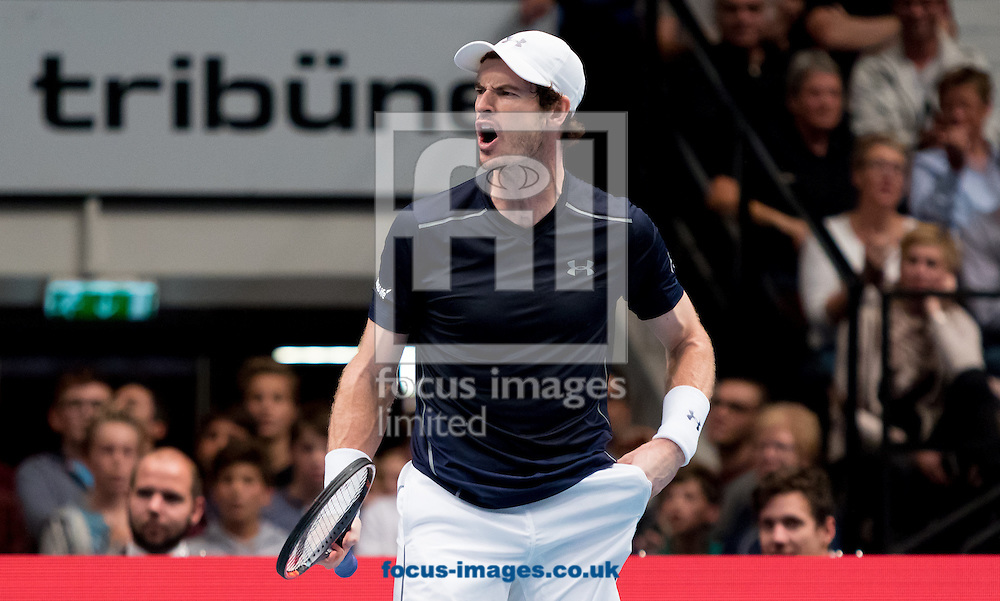 Andy Murray during the final of the Erste Bank Open at Wiener Stadthalle, Vienna, Austria.<br /> Picture by EXPA Pictures/Focus Images Ltd 07814482222<br /> 30/10/2016<br /> *** UK &amp; IRELAND ONLY ***<br /> EXPA-PUC-161030-0357.jpg