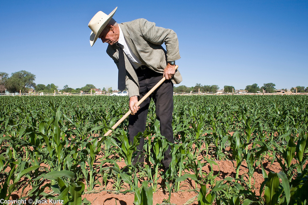"""June 16, 2008 -- COLORADO CITY, AZ: JOSEPH JESSOP, 86 years old, uses a hoe to weed his corn field in Colorado City, AZ. Jessop, a polygamist and member of the FLDS, was arrested during the Short Creek Raid in 1953 and had his wives and children taken from him for two years. Colorado City and neighboring town of Hildale, UT, are home to the Fundamentalist Church of Jesus Christ of Latter Day Saints (FLDS) which split from the mainstream Church of Jesus Christ of Latter Day Saints (Mormons) after the Mormons banned plural marriage (polygamy) in 1890 so that Utah could gain statehood into the United States. The FLDS Prophet (leader), Warren Jeffs, has been convicted in Utah of """"rape as an accomplice"""" for arranging the marriage of teenage girl to her cousin and is currently on trial for similar, those less serious, charges in Arizona. After Texas child protection authorities raided the Yearning for Zion Ranch, (the FLDS compound in Eldorado, TX) many members of the FLDS community in Colorado City/Hildale fear either Arizona or Utah authorities could raid their homes in the same way. Older members of the community still remember the Short Creek Raid of 1953 when Arizona authorities using National Guard troops, raided the community, arresting the men and placing women and children in """"protective"""" custody. After two years in foster care, the women and children returned to their homes. After the raid, the FLDS Church eliminated any connection to the """"Short Creek raid"""" by renaming their town Colorado City in Arizona and Hildale in Utah.   Photo by Jack Kurtz"""