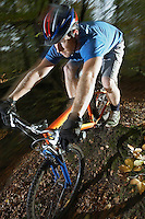 Mountain biker in woodland