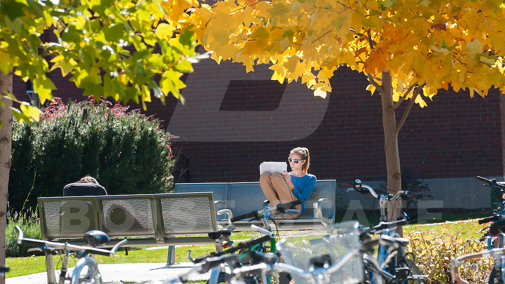 campus scenes, student life, fall, anm