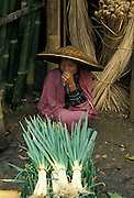 Spring onion farmer selling her produce, Yokyakarta, Java, Indonesia
