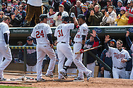 Oswaldo Arcia #31 of the Minnesota Twins is congratulated by teammates after hitting a home run in Game 1 of a split doubleheader against the Miami Marlins on April 23, 2013 at Target Field in Minneapolis, Minnesota.  The Twins defeated the Marlins 4 to 3.  Photo: Ben Krause