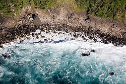 Southland District:  Coastal views north of Sutherland Sound, Fiordland National Park.
