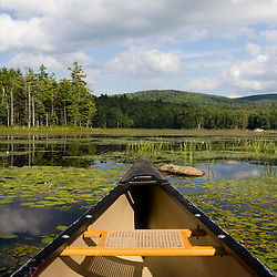 Canoe and Lily pads on Robb Reservoir in Stoddard New Hampshire USA