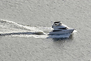 Cortlandt Manor, NY - A  motor boat speeds up the Hudson River south of the Bear Mountain Bridge on Nov. 2, 2008.