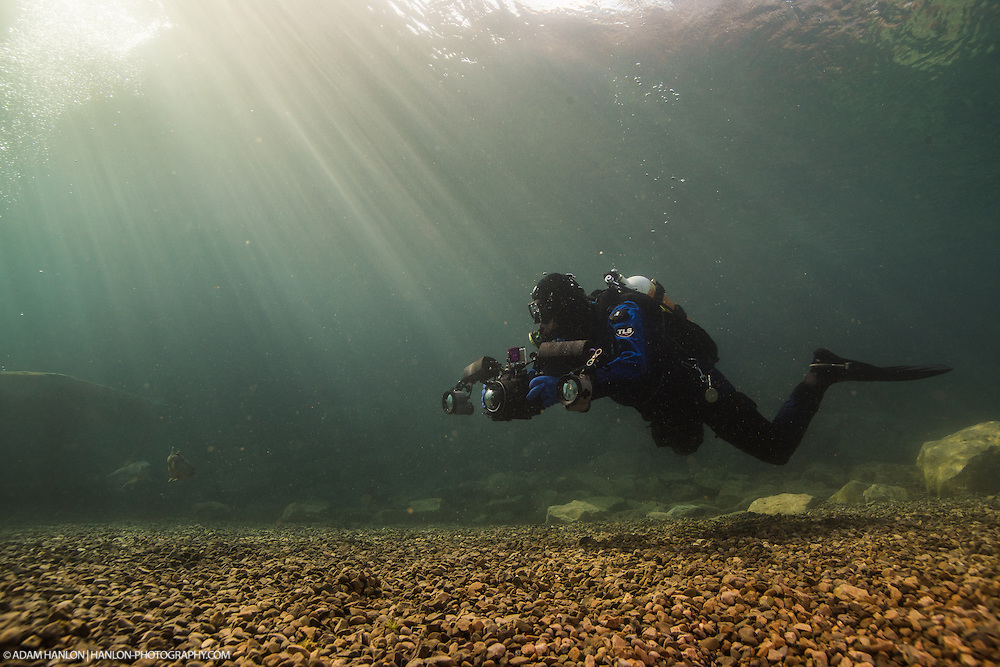 The light quality in really clear water makes for some stunning imagery. 5°C water with sunlight...Capernwray Diving center, Nr. Lancaster, UK