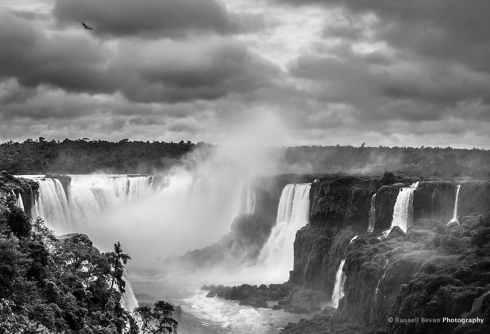 A vulture circles over the Iguasu Falls as the jungle and river cascade into the valley below.
