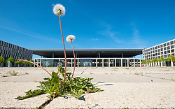 View of weeds growing at new Berlin Brandenburg Airport Willy Brandt uncompleted and 7 years behind schedule in Berlin Germany