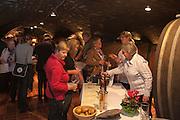 Weinverkostung Rotweine Weingüter aus Assmannshausen, Staatsweingut Domäne Assmannshausen, Weinkeller, Gewölbekeller , Assmannshausen, Hessen, Rheingau, Oberes Mittelrheintal, Deutschland | cask, States Winery Assmannshausen, wine cellar, Rheingau, Upper Middle Rhine Valley, Hesse, Germany