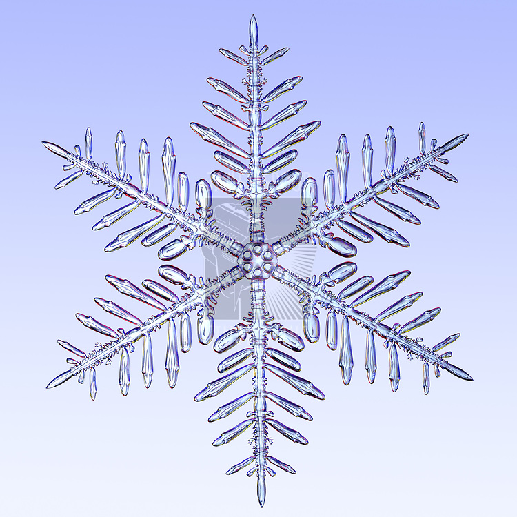 A microscopic zoom of a snowflake. A 3d Render instiped by snowflake photography.