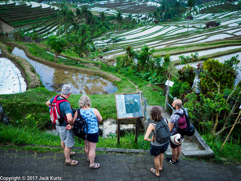 28 JULY 2017 - JATILUWIH, BALI, INDONESIA: Tourists look at a map of rice terraces near Jatiluwih, in central Bali. Rice is the most important crop grown on Bali and is important as a food source and a symbol of Balinese culture. Hiking through the terraces is a popular tourist past time.    PHOTO BY JACK KURTZ