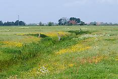 Hinnaard, Fryslân, Netherlands