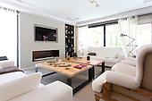 Modern Home 1101