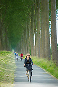 Adult cyclists riding bicycles canalside at Damme, province of West Flanders in Belgium