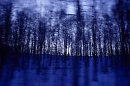Blue(s), paysages émotionnels