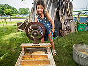 27 JUNE 2019 - CENTRAL CITY, IOWA: SOPHIE ARNOLD, 9, grinds corn in an antique grinder at the pioneer life display at the Linn County Fair. Summer is county fair season in Iowa. Most of Iowa's 99 counties host their county fairs before the Iowa State Fair, August 8-18 this year. The Linn County Fair runs June 26 - 30. The first county fair in Linn County was in 1855. The fair provides opportunities for 4-H members, FFA members and the youth of Linn County to showcase their accomplishments and talents and provide activities, entertainment and learning opportunities to the diverse citizens of Linn County and guests.        PHOTO BY JACK KURTZ