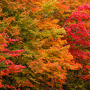 """For Your Eyes Only""<br />
