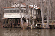 Caddo Lake in Deep Northeast Texas near Uncertain, Texas
