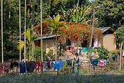 Local farm house in Assam, north-east india.
