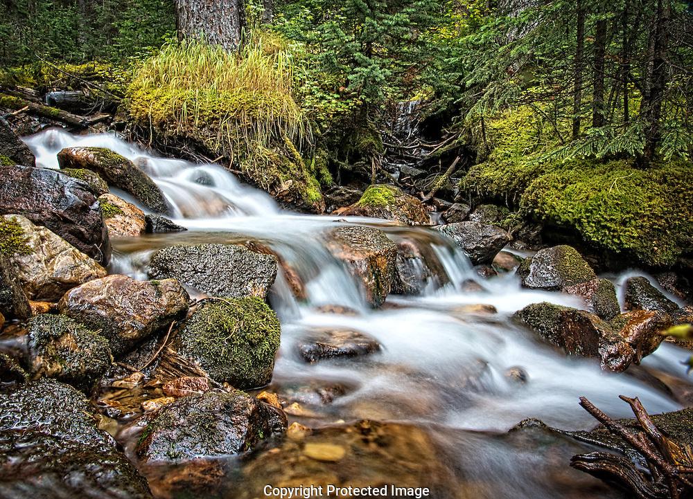 Mountiain creek., Alberta, Canada, Isobel Springett