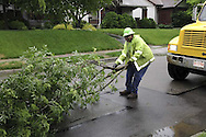 William Crawford removes one of the branches that was hanging into the street following heavy rains amid threats of severe weather in the Belmont area of Dayton, Wednesday, June 4, 2008.