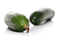 Studio shot of cucumbers on white background