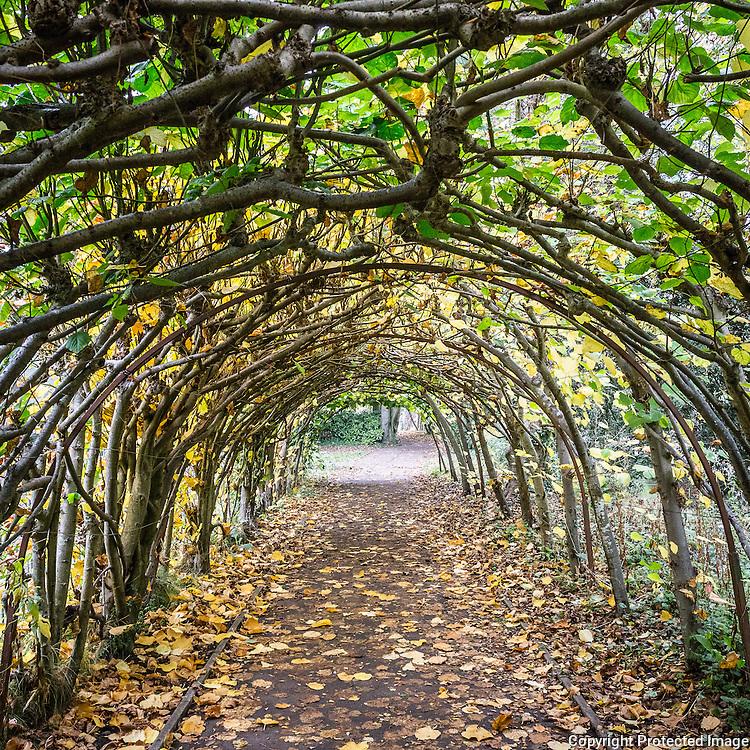 The Arbour, Priory Gardens, Christchurch, Dorset.