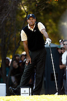15 December 2007: Pro PGA golfer Tiger Woods participates during the third round of the ninth annual Target World Challenge golf tournament presented by the Tiger Woods Foundation at Sherwood Country Club in Thousand Oaks Westlake Village in Southern California.  Tiger watches the ball he hit off the second tee box.