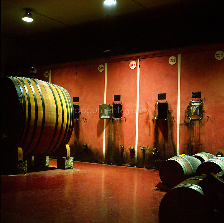 Barrels at the Chateau Sainte Roseline, Les-Arcs-sur-Argens, France