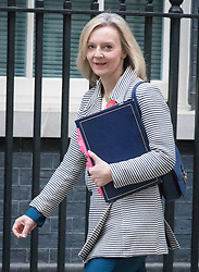 © Licensed to London News Pictures. 01/11/2016. London, UK. Justice Secretary Elizabeth Truss arrives on Downing Street for the weekly Cabinet meeting. Photo credit: Rob Pinney/LNP