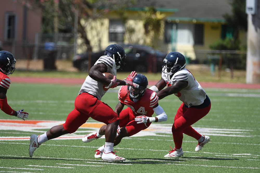 2018 FAU Football Scrimmage @ Carter Park