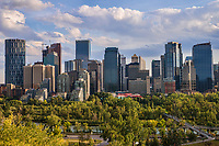 Sunnyside Bank Park (Foreground) & Calgary Skyline