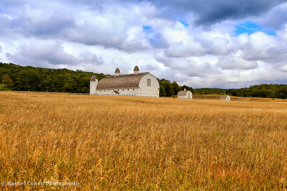 &quot;White Barn and Field&quot;<br />