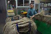 Nicolas Jourdaine is sorting the scutched flax fibers at the end of the scutching line, Terre de Lin, Saint Pierre le Viger, Seine Maritime, France<br /> Client: Bloomberg News