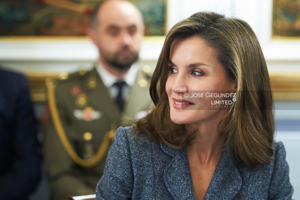 Queen Letizia of Spain attended a Meeting of the Council of the Royal Board on Disability and delivery of the Queen Letizia Awards at Palacio de El Pardo on November 21, 2017
