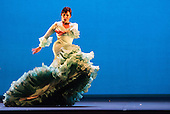 Gala Flamenca_2015