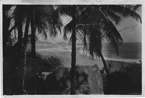 Photographs taken by William Lyons whilst in Ceylon 1943/44.