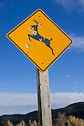 "Big game hunters have repeatedly used a ""deer crossing"" sign for target practice. This sign was found near Rifle, Colorado."