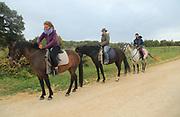 Three people horse riding in countryside near Ronda, Malaga province, Spain