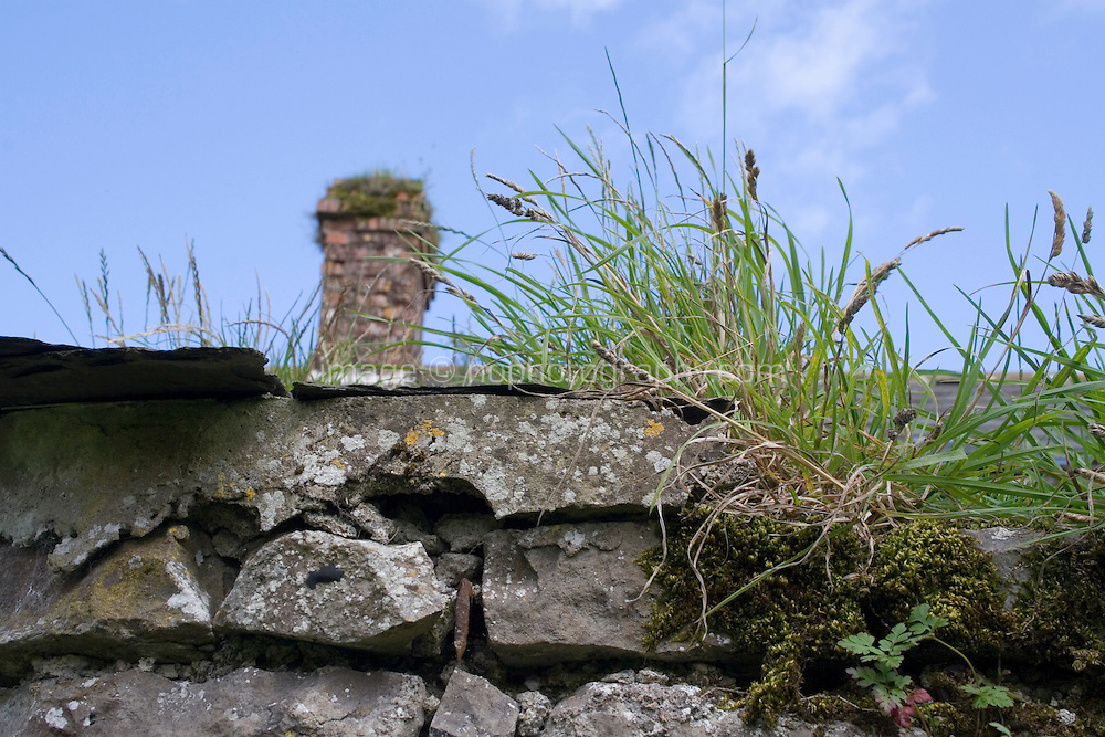 Edge of slate roof fo farmyard stone building in Ireland