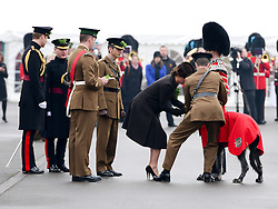 © Licensed to London News Pictures. 17/03/2015. Aldershot, United Kingdom. The Duke and Duchess of Cambridge hand out Shamrocks as they attend the 1st Battalion Irish Guards St Patrick's Day Parade at Mons Barracks. Photo Credit: Steve Back/LNP