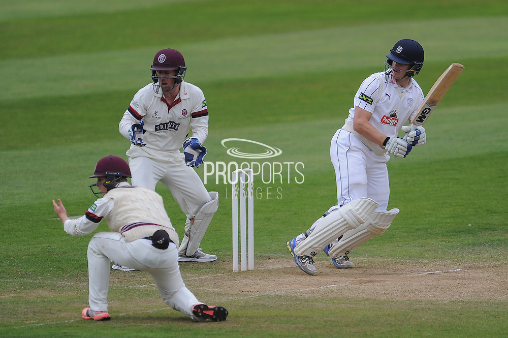 Jimmy Adams batting during the LV County Championship Div 1 match between Somerset County Cricket Club and Hampshire County Cricket Club at the County Ground, Taunton, United Kingdom on 11 September 2015. Photo by David Vokes.