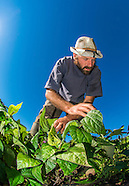 20140802 Chatfield CSA