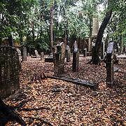 Venezia - L'antico cimitero ebraico di Venezia. Venice the old jewish cemetery in Venice.