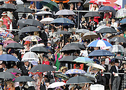 © Licensed to London News Pictures. 21/06/2012. Ascot, UK Racegoers and umbrellas. Ladies Day at Royal Ascot 21st June 2012. Royal Ascot has established itself as a national institution and the centrepiece of the British social calendar as well as being a stage for the best racehorses in the world.. Photo credit : Stephen Simpson/LNP