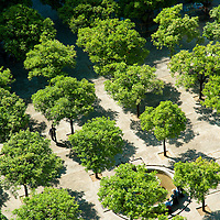 """Aerial view of the garden of the Cathedral in Seville, Spain seen from it's bell tower, so called """"Giralda""""."""