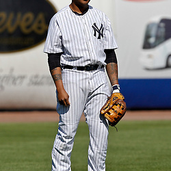 March 4, 2012; Tampa Bay, FL, USA; New York Yankees center fielder Dewayne Wise (38) against the Philadelphia Phillies during spring training game at George M. Steinbrenner Field. Mandatory Credit: Derick E. Hingle-US PRESSWIRE