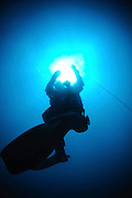 Israel, Eilat, Red Sea, - Underwater photograph of a diver