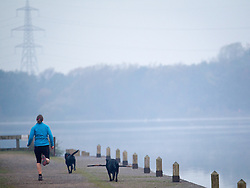 © Licensed to London News Pictures . 06/11/2012 . Manchester , UK . A woman runs with two dogs opposite a foggy Sale moor in crisp weather at Sale Water Park in Manchester this (6th November 2012) morning . Photo credit : Joel Goodman/LNP